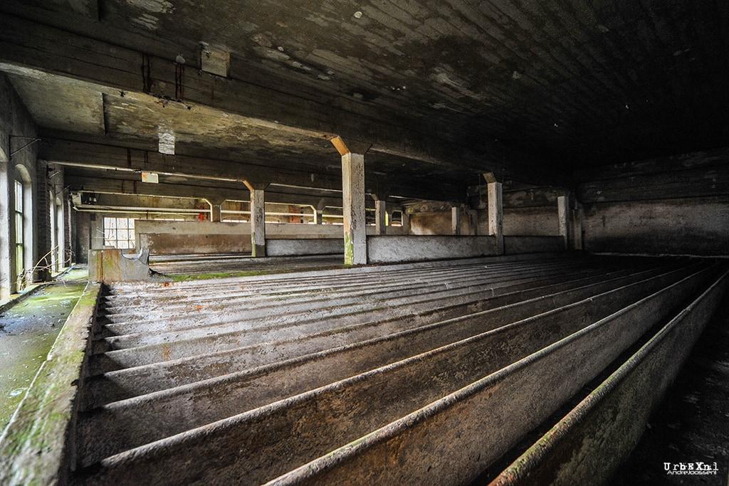 Coöperatieve Aardappelmeelfabriek Ter Apel en Omstreken